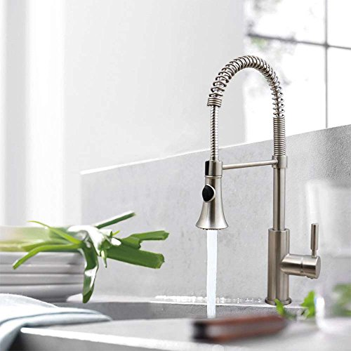 Enbol Vanity Spring Brushed Nickel Stainless Steel Dual Function Sprayer Single Handle Kitchen Sink Faucet