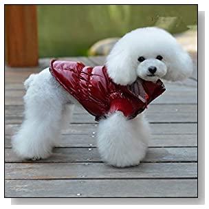 Personalized Small Big Pet Dog Clothing WRM Aclothes Down Coats (Red, S)