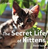 The Secret Life of Kittens (0007263600) by Taylor, David