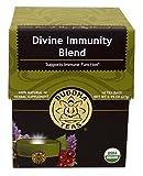 Divine Immunity Blend Tea - Organic Herbs - 18 Sachets Bleach Free Tea Bags From Buddha Teas ~ with Hyssop,Elderberry,Nettle Leaf,Lemon Grass,Wild Cherry Bark, Rose hips, Lemon Balm, Astragalus and Cranberry