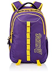 American Tourister Polyester 23Liters Purple Laptop Bag (43W (0) 91 016)