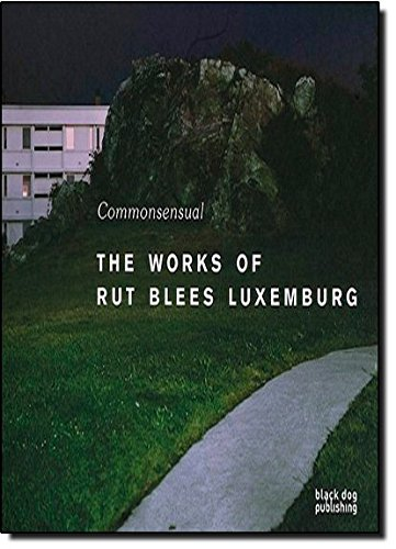 Commonsensual: The Works of Rut Blees Luxemburg (Commonsenual)
