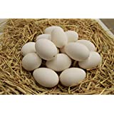 "Blown Goose Eggs (15 pack) (9"", White Soap Wash)"