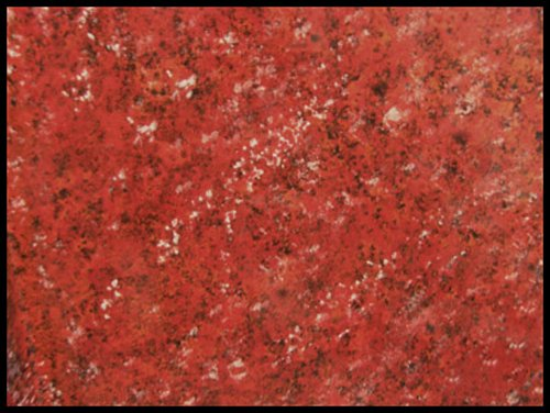 Countertop Paint Red : Countertop Paint Kit, Roma Red Hardware Building Materials Countertops ...