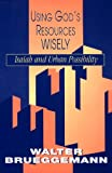 Using God's Resources Wisely: Isaiah and Urban Possibility (0664254608) by Brueggemann, Walter