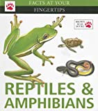 Reptiles & Amphibians (Facts at Your Fingertips)