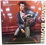 img - for David Bowie: The Illustrated Biography book / textbook / text book