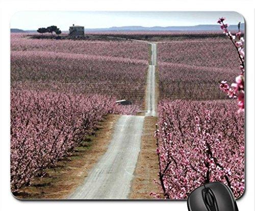 delicatamente-arbusti-glare-mouse-pad-mousepad-flowers-mouse-pad-015