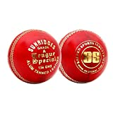 SS League Special Alum Tanned Cricket Balls, Pack Of 12 (White)