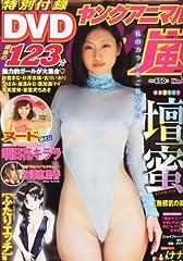 ヤングアニマル嵐 2013年 9/1号 [雑誌]