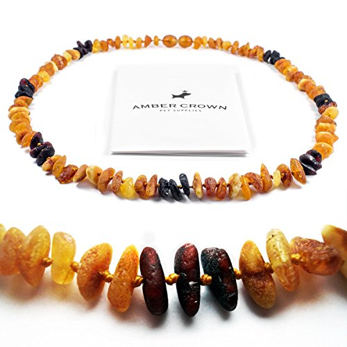 Amber Flea And Tick Collar With Dark And Bright Amber Beads For Dogs And Cats / Untreated Authentic Baltic Amber Dog Necklace / Natural Tick And Flea Control And Prevention / 100 Days 100% Satisfaction Guarantee!