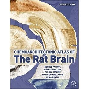 【クリックでお店のこの商品のページへ】Chemoarchitectonic Atlas of the Rat Brain, Second Edition: George Paxinos, Charles Watson, Pascal Carrive, Matthew Kirkcaldie, Ken W.S. Ashwell: 洋書