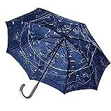 全天星座かさ 長傘