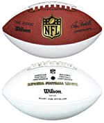 Wilson F1192 White Panel Autograph NFL Football (Roger Goodell Signature)