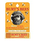 Burt's Bees Honey Lip Balm