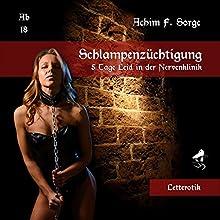 Schlampenzüchtigung: 5 Tage Leid in der Nervenklinik Hörbuch von Achim F. Sorge Gesprochen von: Mona Doliva