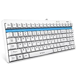 ARION Rapoo V500 Full Keys Programmable PRO Mechanical Gaming Keyboard With 2mm Trigger Stroke and Original Factory MX Yellow Switches for Laptops Desktops PC - WHITE