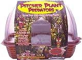 DuneCraft Windowsill Greenhouses Picther Plant Predators