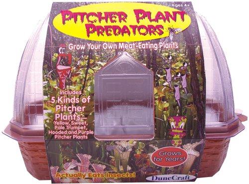 DuneCraft Windowsill Greenhouses Picther Plant Predators (Pitcher Plant Predator compare prices)