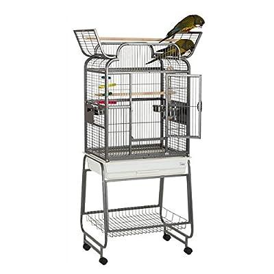 Liberta Drake Medium Open Top Parrot Senagal Conure Bird Cage On Castors 3 Toys