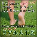 ハイグレード リアル 人工芝 ロールタイプ 芝丈20mm 2M幅 カット売り 50cm単位【最大4.5mまで】