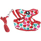 Imported Sweet Strawberry & Dots Dog Puppy Harness Leash Lead Walking Collar White S
