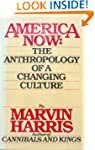 America Now: The Anthropology of a Ch...