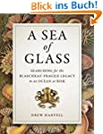 Sea of Glass: Searching for the Blasc...