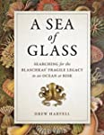 A Sea of Glass: Searching for the Bla...