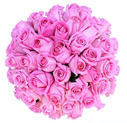 50 Mother\'s Day Farm Fresh Pink Roses Bouquet By JustFreshRoses | Long Stem Fresh Pink Rose Delivery | Farm Fresh Flowers