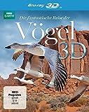 DVD & Blu-ray - Die fantastische Reise der V�gel  (inkl. 2D-Version) [3D Blu-ray]