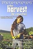 Harvest [Import]