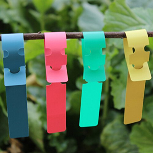 mr-labelr-100pcs-wrap-around-plastic-plant-nursery-garden-labels-tags-2x20cm