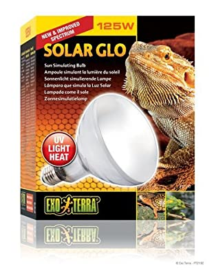 Exo Terra Solar-Glo High Intensity Self-Ballasted Uv/Heat Mercury Vapor Lamp - 160-Watt. Lamp