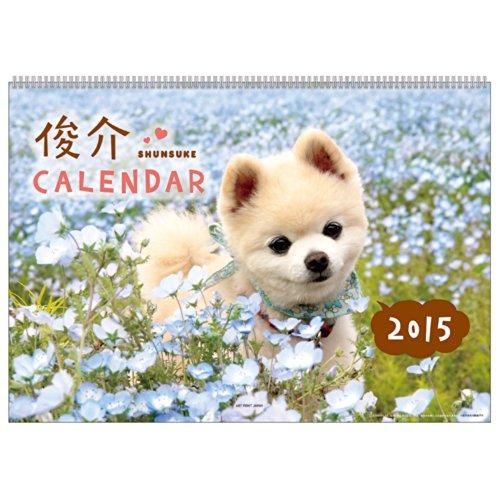 A.P.J. 2015年度カレンダー 俊介カレンダー No.028 1000055407