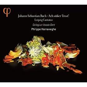 Es ist nicht Gesundes an meinem Leibe, BWV 25: Aria: Offne meinen schlechten Liedern (Soprano)