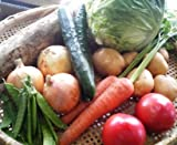 【送料無料】ミニ野菜セット 7種類 有機肥料、農薬・化学肥料不使用の野菜