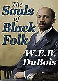 The Souls of Black Folk (Transaction Large Print Books)
