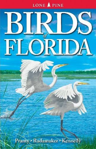 Birds of Florida