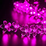 (リーダーテク)lederTEK ソーラー 防雨防水型 ピンク 桃花形電飾 イルミネーション LED 6.4m 50球 2点滅モデル クリスマス ライト 飾り付け