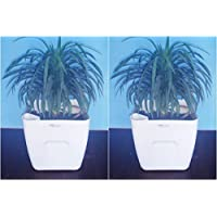 "Self Watering Square Neck AVANT Smartpot 9.3"" From Virgin Plastic In White-Set Of Two"