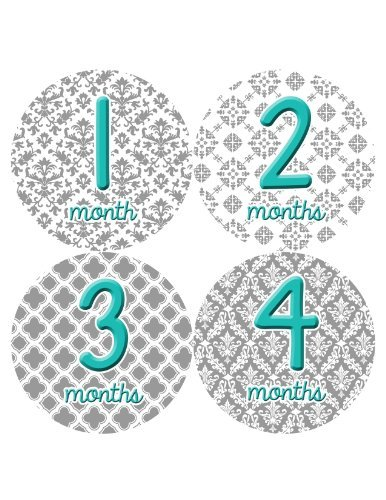 Months in Motion 044 Monthly Baby Stickers Baby Girl Milestone Age Month Sticker - 1