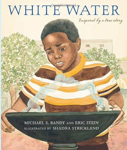White Water: Michael S. Bandy, Eric Stein, Shadra Strickland: Amazon.com: Books