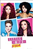 Little Mix (DNA) - Maxi Poster - 61cm x 91.5cm