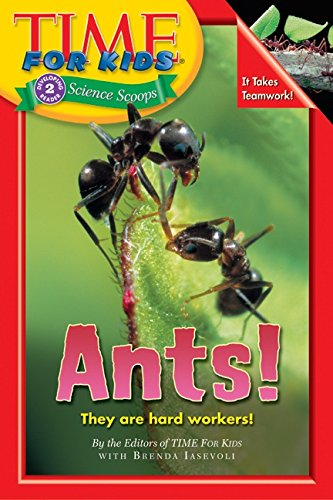 time-for-kids-ants-time-for-kids-science-scoops
