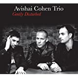 Gently Disturbedvon &#34;Avishai Cohen&#34;