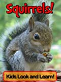 Squirrels! Learn About Squirrels and Enjoy Colorful Pictures - Look and Learn! (50+ Photos of Squirrels)