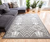 Nazar Grey Tribal Lattice Vintage Modern Casual Traditional Trellis 5x7 ( 5' x 7'2'' ) Area Rug Thick Soft Plush Shed Free