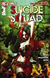 img - for Suicide Squad (2011- ) #1 book / textbook / text book
