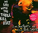 I See Good Spirits, I See Bad Spirits by My Life With the Thrill Kill Kult (2004-02-02)
